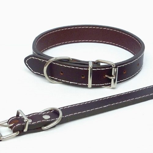 Plain brown dog collar, in a traditional style, made from genuine leather